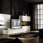 6.Fascinating-White-Furniture-and-Black-Wall-Paint-in-Contemporary-Living-Room-Decor-Idea